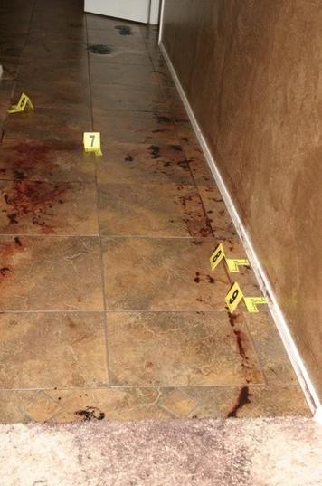 Hallway Blood Trail