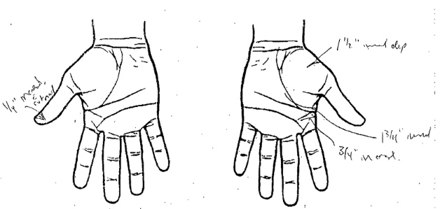 Hands Diagram