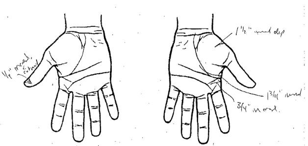Hands Diagram